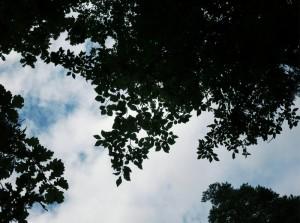 (29.8.2012 10.18 km)