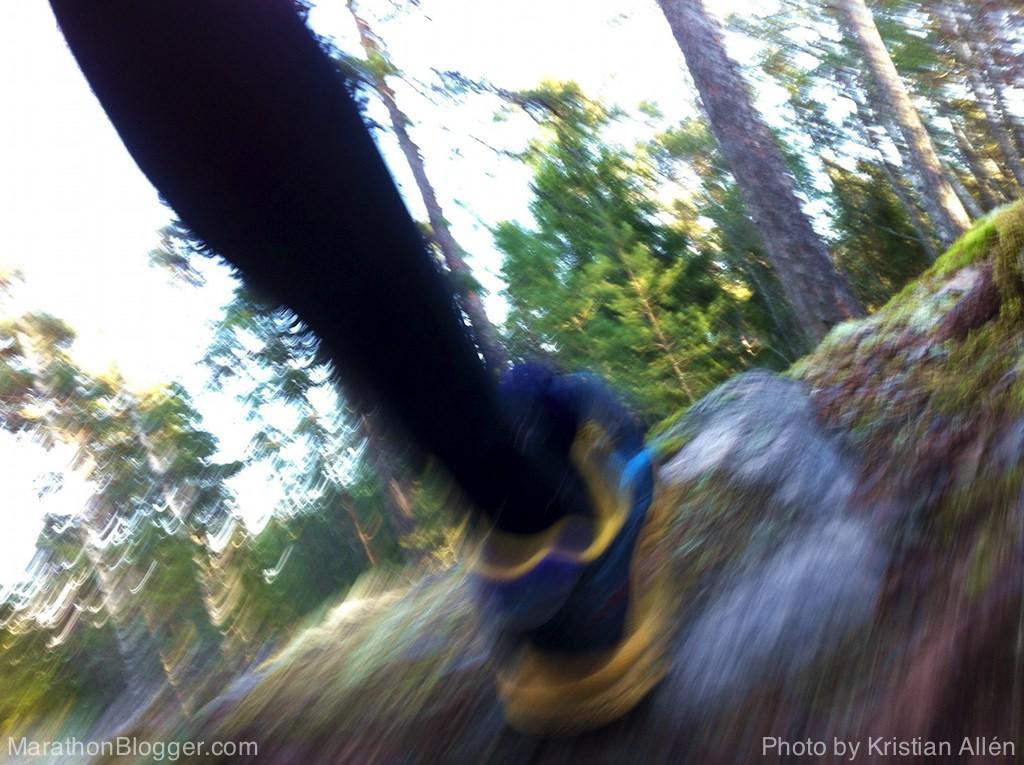 24.11.2013 10.66 km