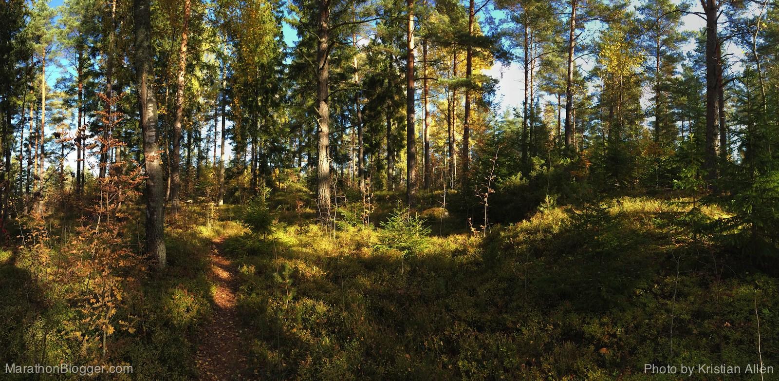 5.10.2014 10.42 km