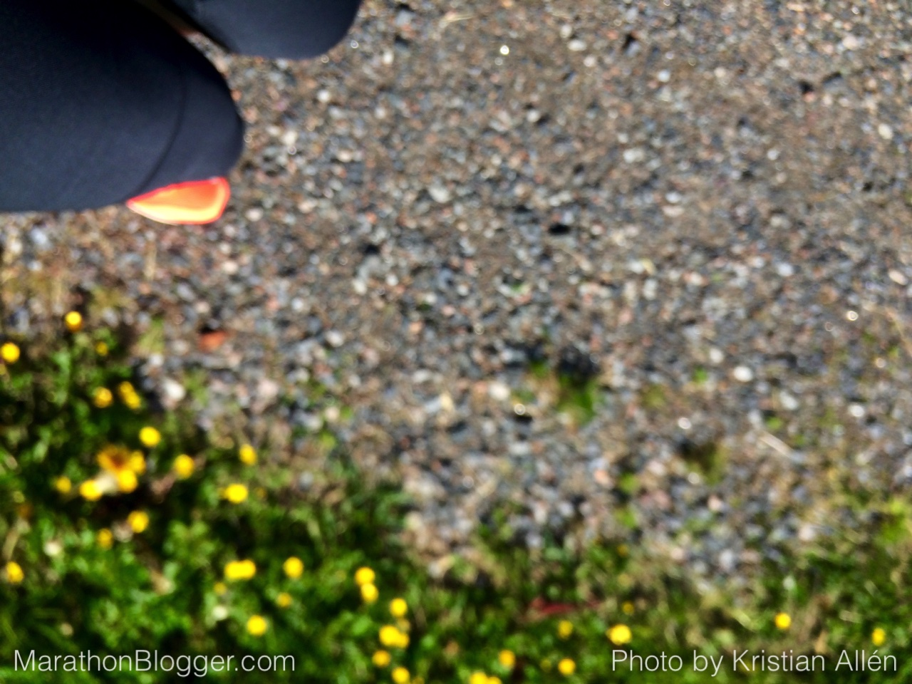 3.6.2015 11.02 km Run