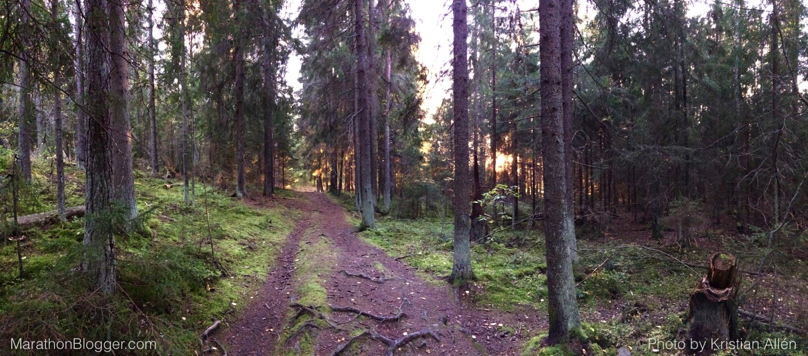 29.9.2015 21.10 km Run