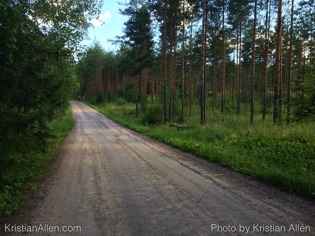 14.7.2016 15.09 km Run