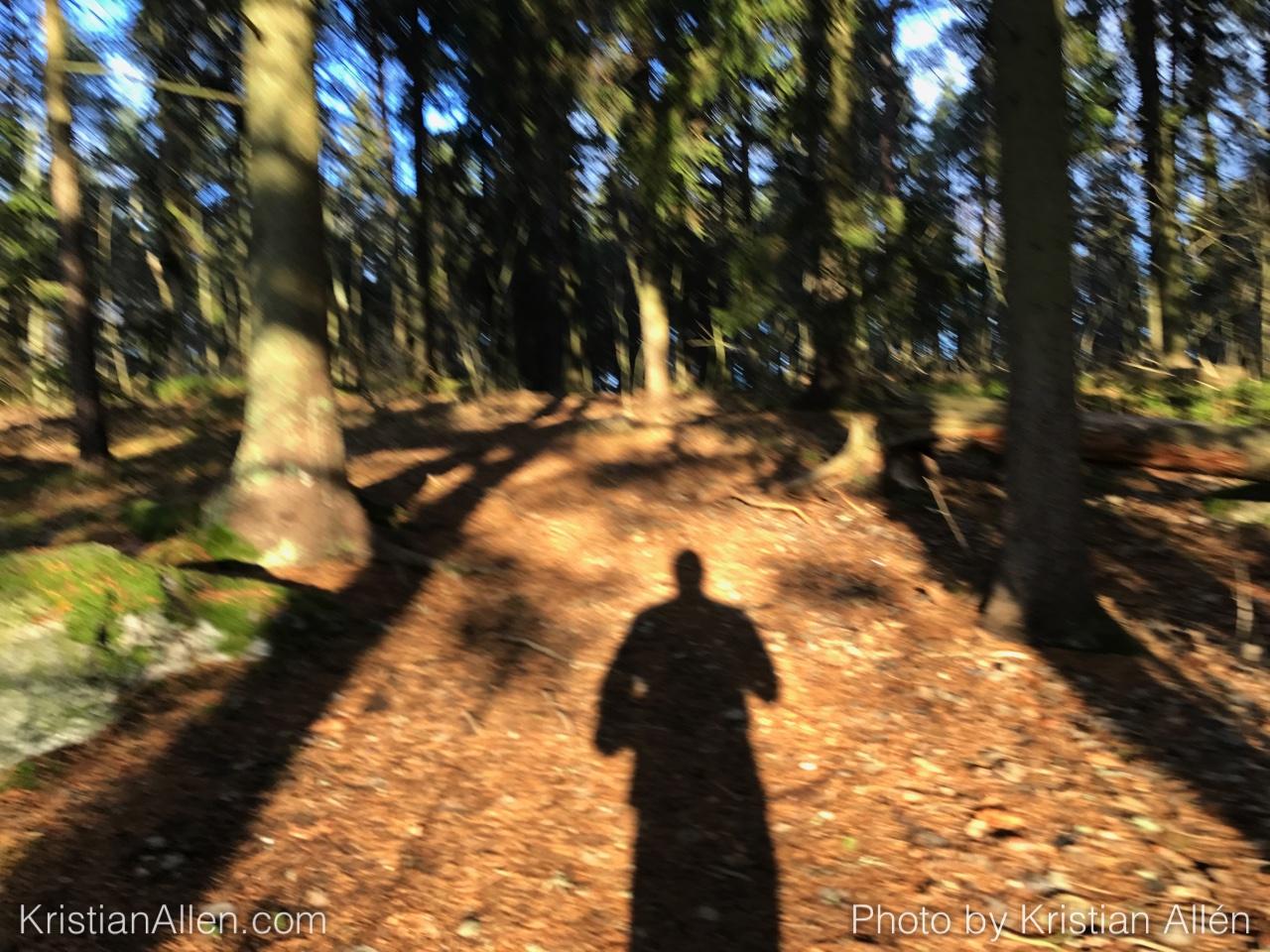 26.12.2016 8.92 km Run