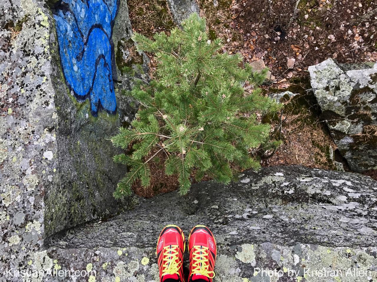 13.4.2017 12.00 km Run